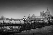 Piazza San Marco - Venezia Italy:Black and White Photo-155
