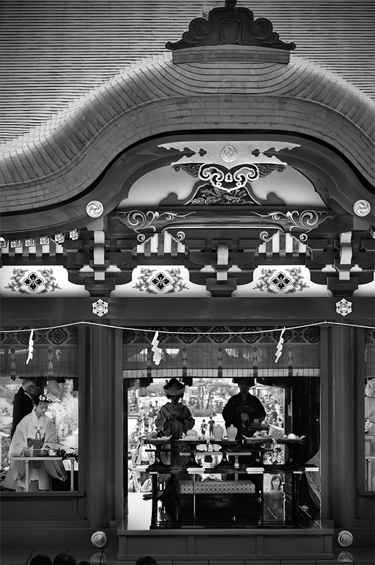 Kamakura Hachimangu Japan:Black and White Photo-175