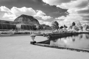 Kew Garden:Black and White Photo-107