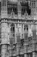 The Palace of Westminster London:Black and White Photo-58