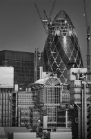 London Gherkin:Black and White Photo-193