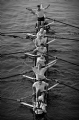 The Oxford and Cambridge Boat Race Year 2007:Black and White Photo-207