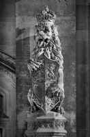 Heraldic Lion on the westminster:Black and White Photo-216