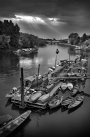 View from Richmond Bridge:Black and White Photo-263