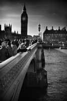 Looking down over Westminster Bridge:Black and White Photo-375