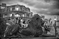 The Lions in Trafalgar Square:Black and White Photo-457