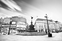 Piccadilly Circus:Black and White Photo-670