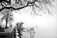 Foggy day:Black and White Photo-674