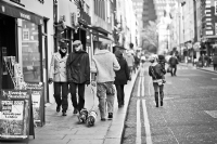 The street of London 2011:Black and White Photo-623
