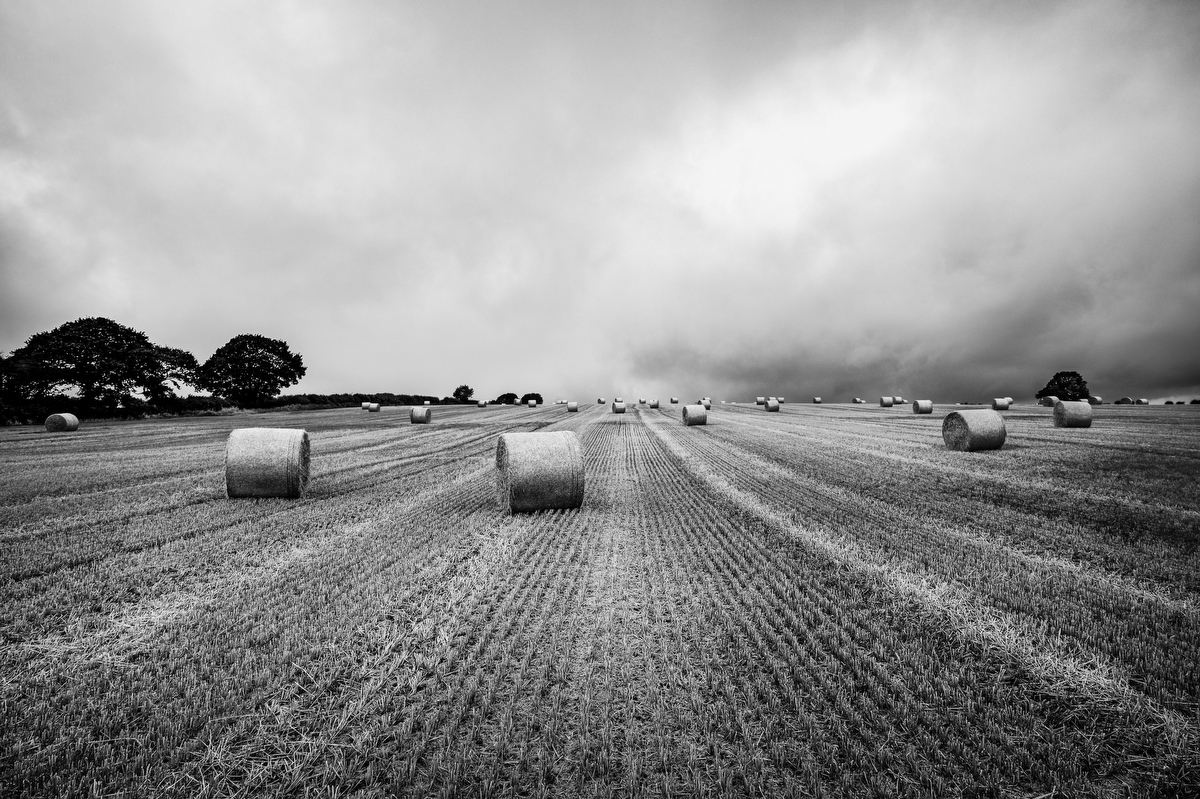 Hay bale dry on field, England:Black and White Photo-740